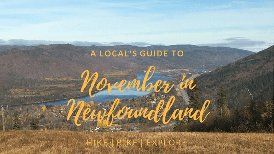 A Local's Guide to November in Newfoundland