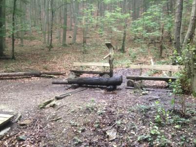 Tränke im Wald