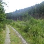 Ruhige Wanderpfade
