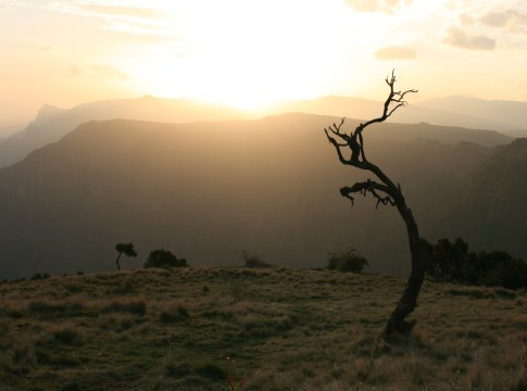 Sonnenaufgang im Simien Nationalpark
