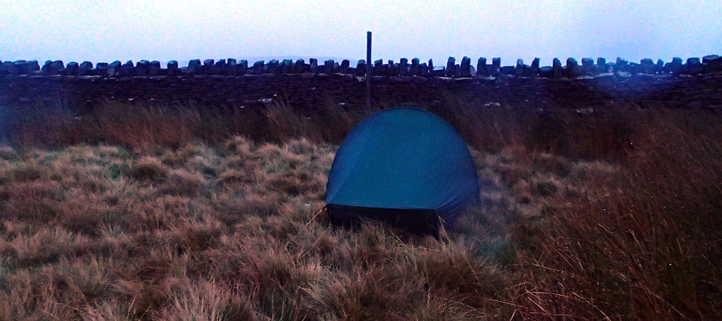 Tent pitched in between high grass and in very boggy ground