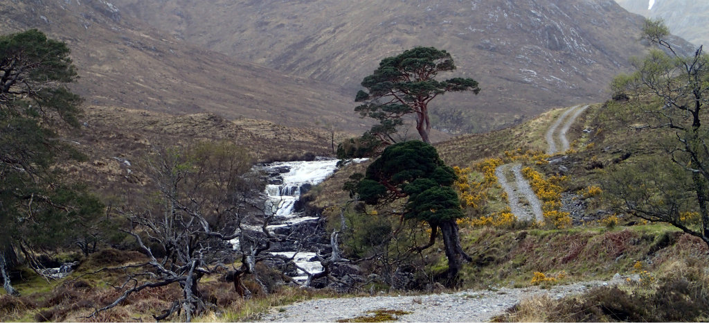 the beautiful Cona Glen and the easy introduction it offers