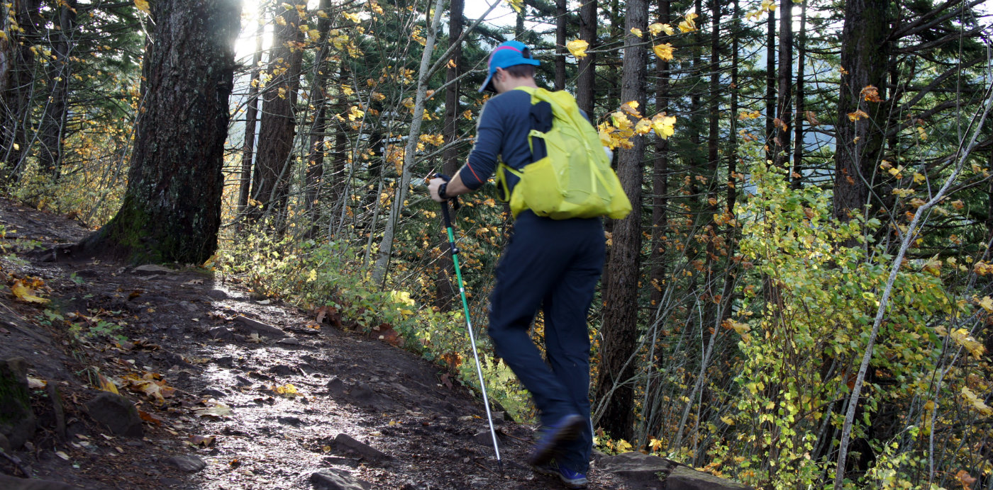 Hiking poles will do a great deal to help your knees