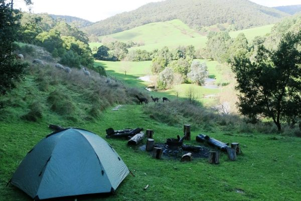 Out Doors Inc participants camping in the outdoors
