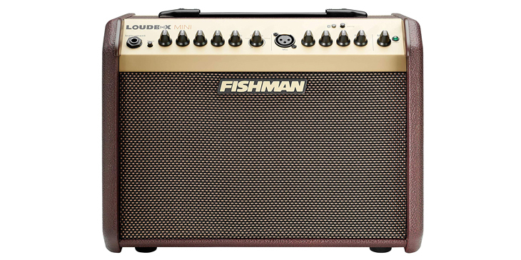 Best Amps for Acoustic Guitars
