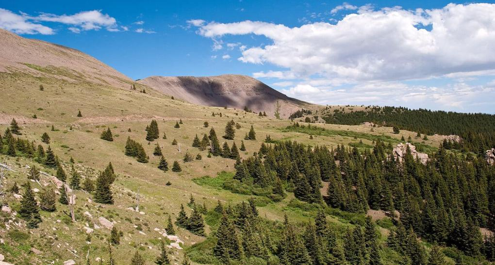 Greenhorn Mountain Wilderness