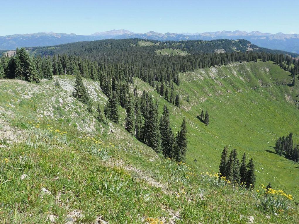 Indian Trail Ridge Hermosa Creek Wilderness