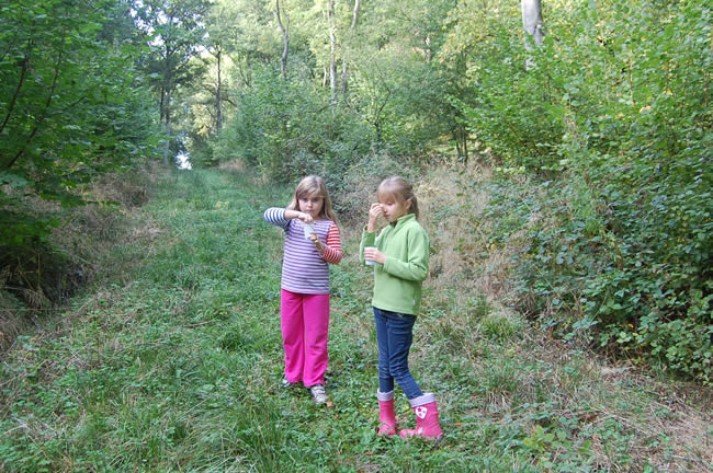 two girls standing in woodland