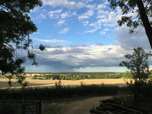 view from wood over fields