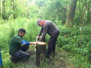 two men constructing a woodland bench