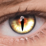 foxeyes change eye color by real anime style