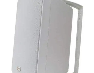 Klipsch AW-650 6.5 Speaker