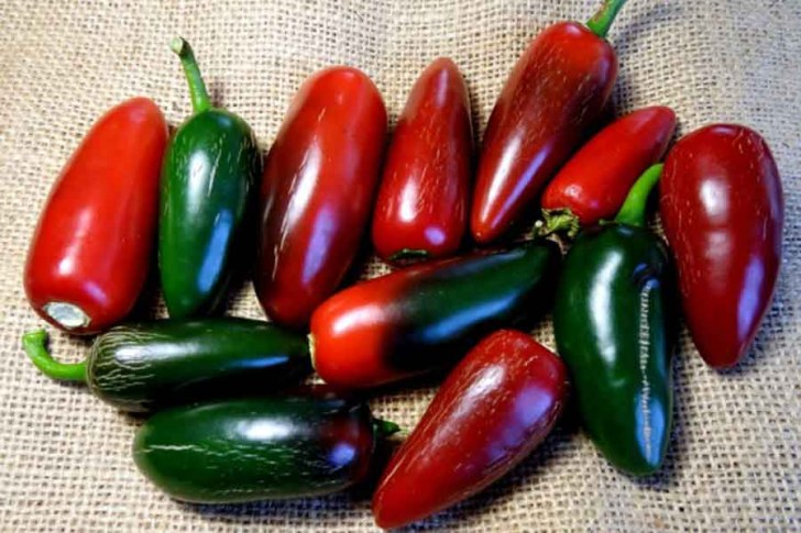 Rosie's Recipes: Get Poppin' With Jalapeños