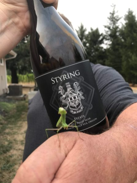 praying mantis at Styring