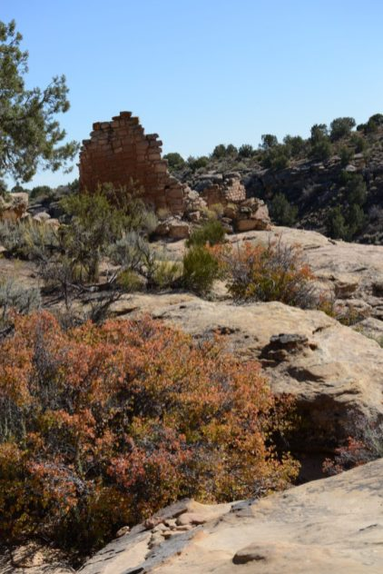 Hovenweep with fall color