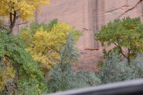 Pictograph Canyon de Shay