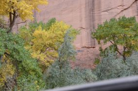 Pictograph Canyon de Shay