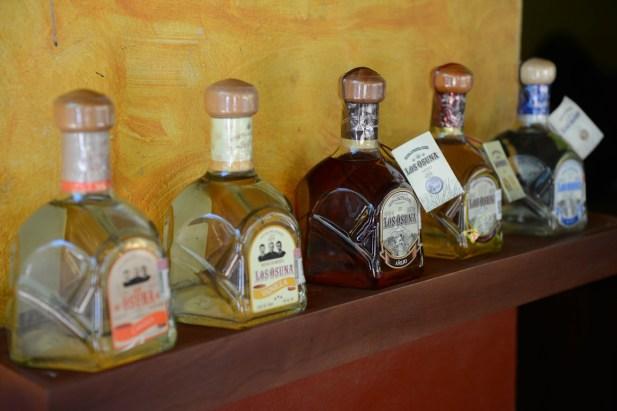 Many Flavors - Los Osuna Tequila Distillery Sinaloa Mexico