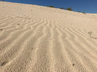 Patterns form on the dunes
