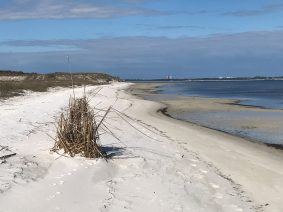 The bay side beach and light house on the far side, Fort Pickens, FL