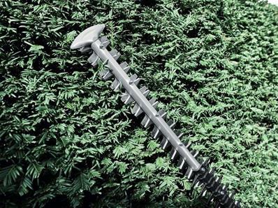 bosch taille haie sans fil sur batterie 36 v ghe 6 t 0600912001