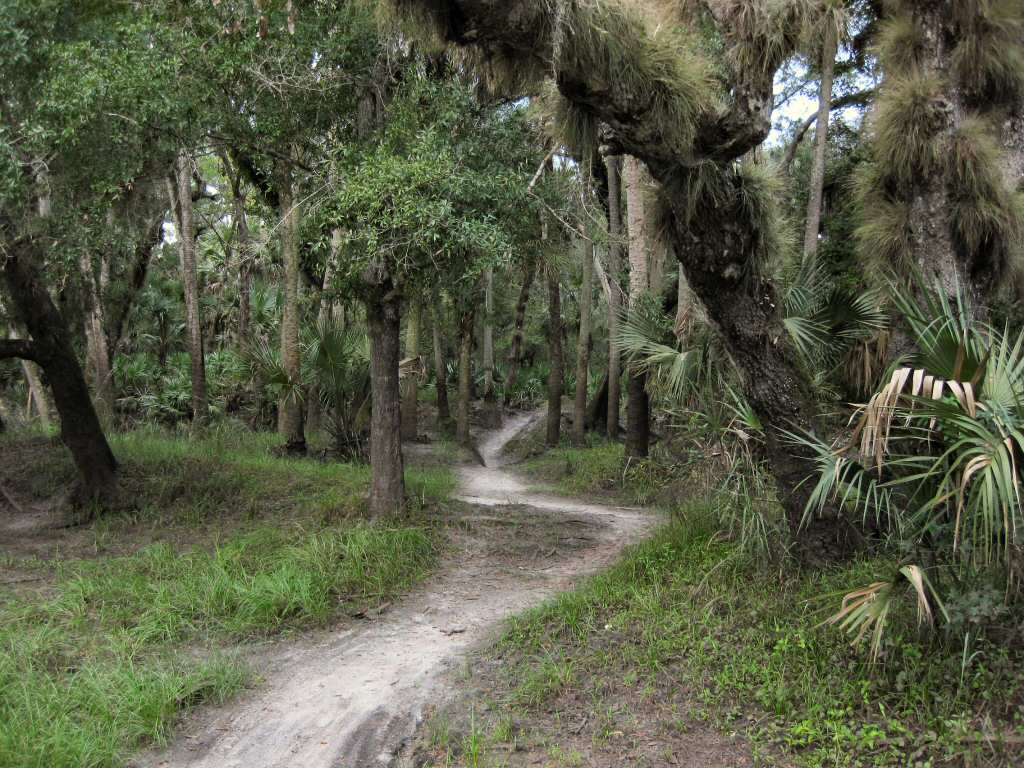 Image Result For Mountain Biking Trails Near Me