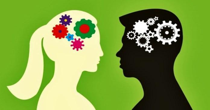 men womwn brain mechanism