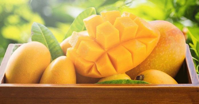 Do you know the benefits of ripe mangoes