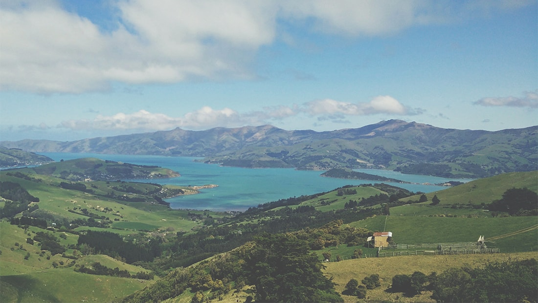5 Can't Miss Wineries in New Zealand