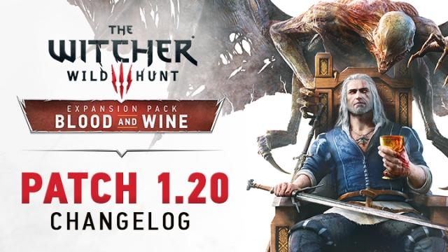 Witcher patch
