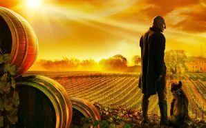 My Thoughts on the Star Trek: Picard Trailer