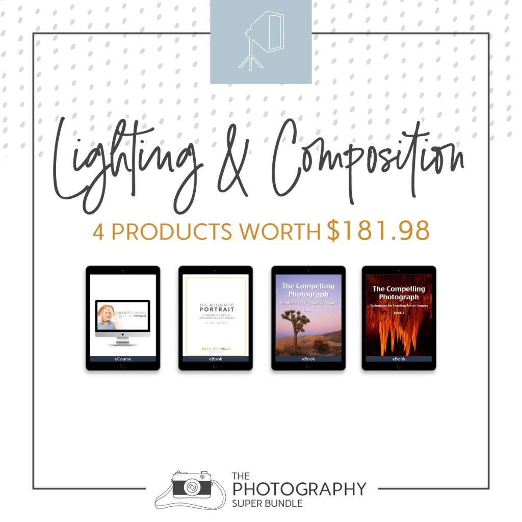 Lighting & Composition 4 products worth $181.98