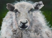 Baa Humbug Acrylic painting on stretched canvas