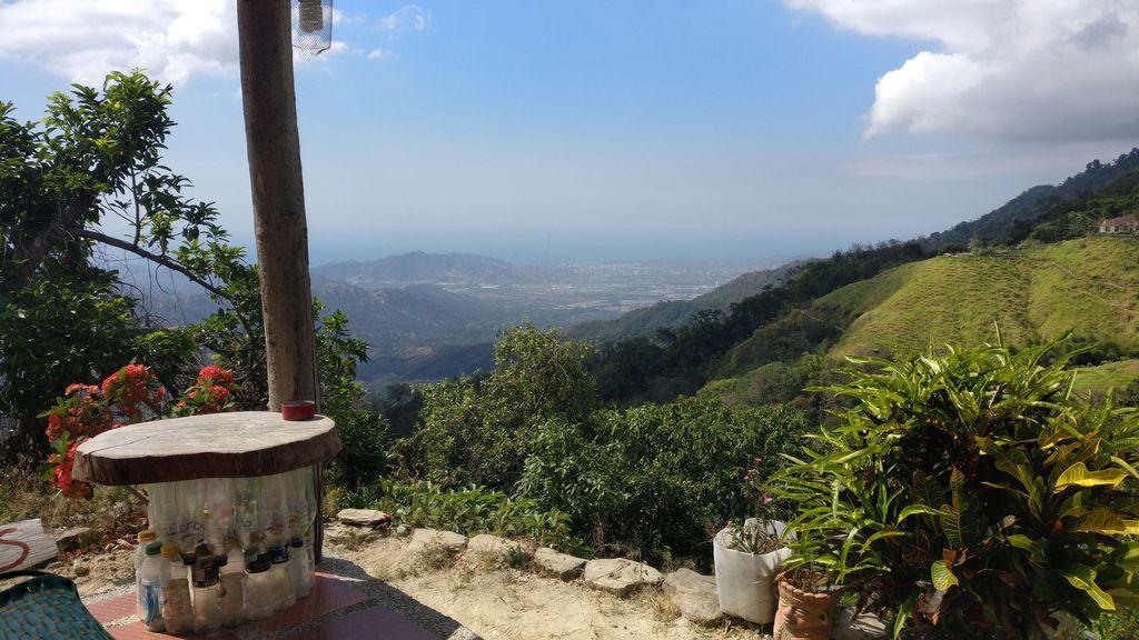 Candalaria Coffee Farm