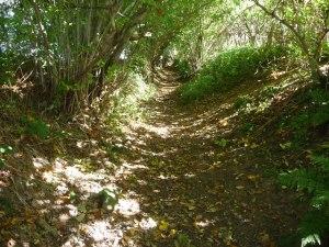 Sunken Road, Clun