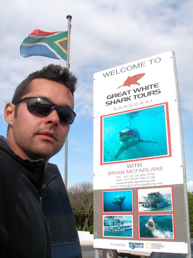 Diving with White Sharks South Africa