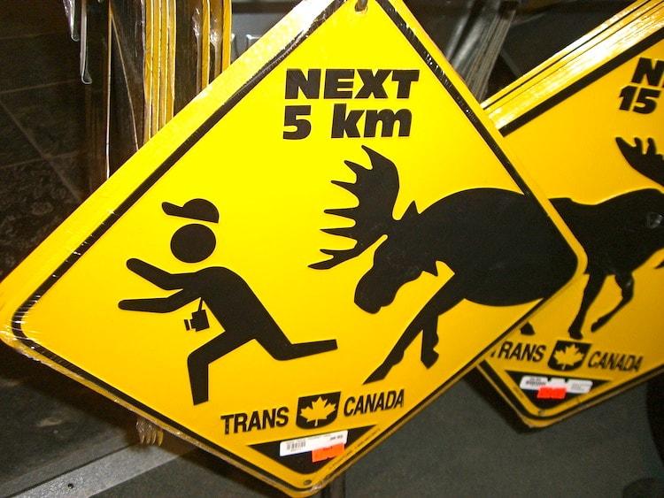 Icefields Parkway – Canadá sinal de estrada