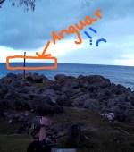 Angaur from Peleliu in Palau