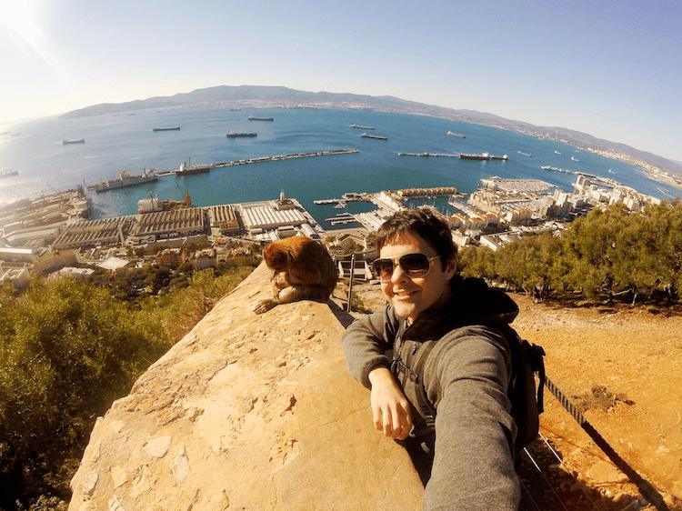 Gibraltar rock apes den monkeys