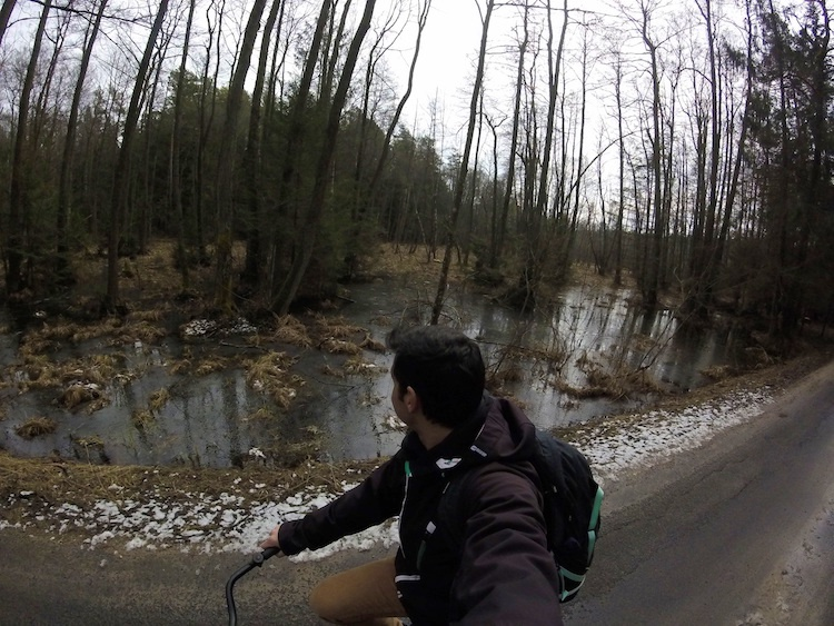 Belovezhskaya-Pushcha-National-Park-Biking 2