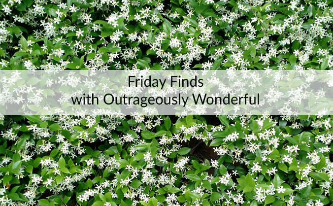 Friday Finds with Outrageously Wonderful