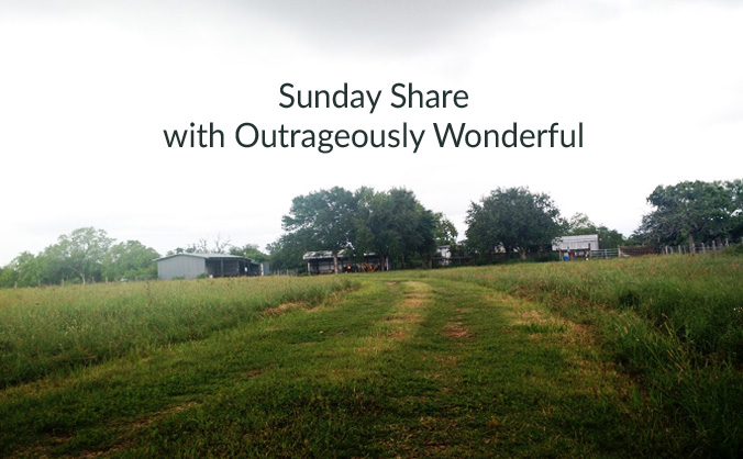 This week, I'm sharing a few beautiful finds. We often think of beauty, or beautifying our lives, as a luxury or an indulgence, but I can't help but look at the world around us and think that God wants us to be surrounded by beauty as a way of worship. By creating beautiful spaces, or beautiful moments in our lives, we are mirroring the beauty that He created around and in us. Beauty, then, becomes an essential part of a life well lived and not frivolous or indulgent.