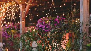 Pergola Lights! Eight Easy Pergola Lighting Ideas