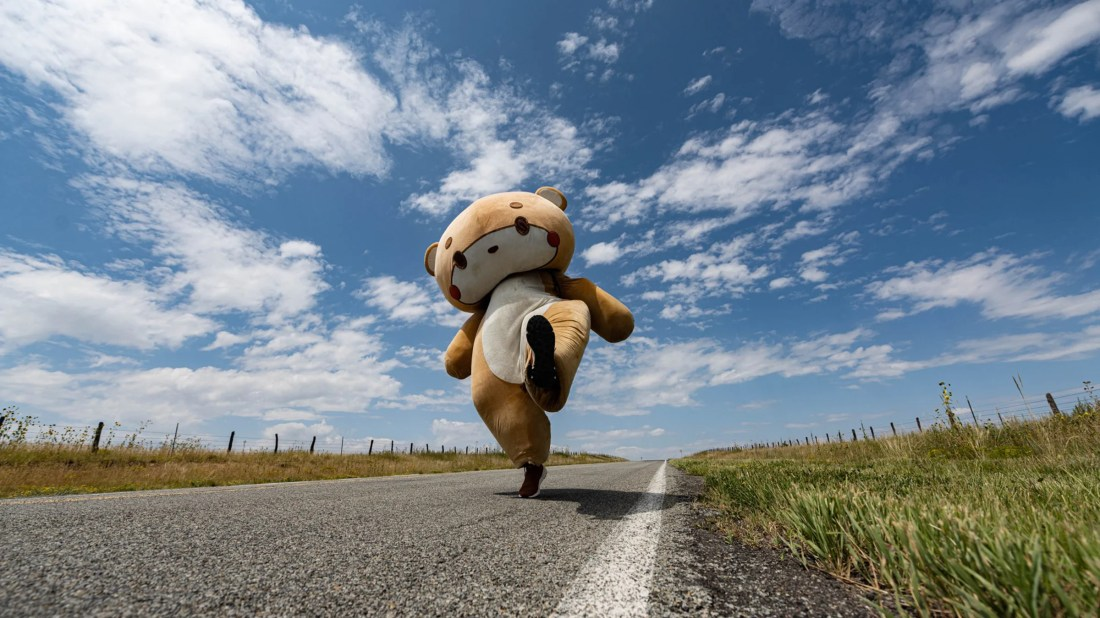Six Million Steps in a 70-Pound Bear Suit