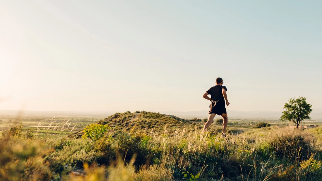 Why Sprinters Peak in the Evening and Marathoners Don't