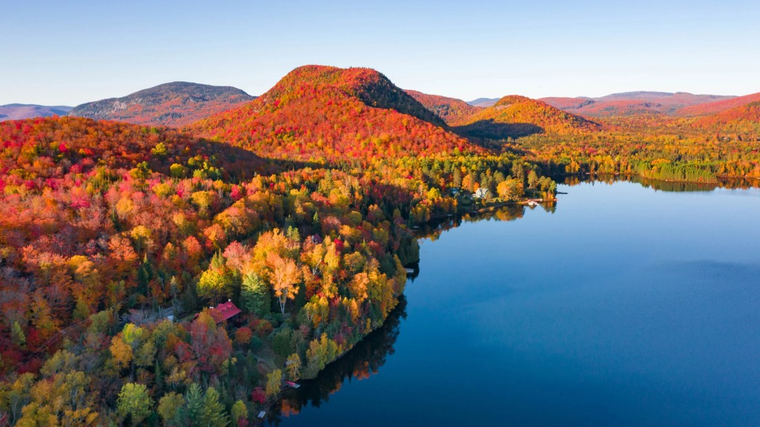 Use This App to Find the Best Fall Foliage