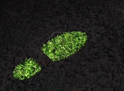 asfalto ecosostenibile