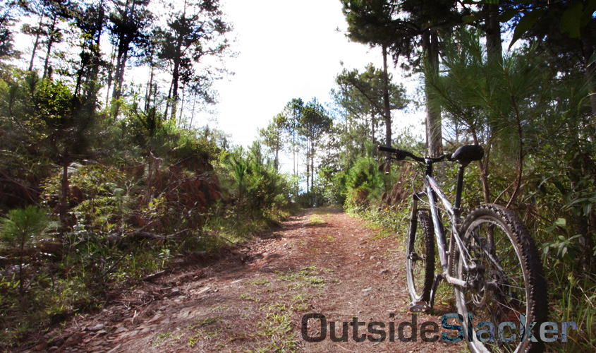 a bike and the trail ahead