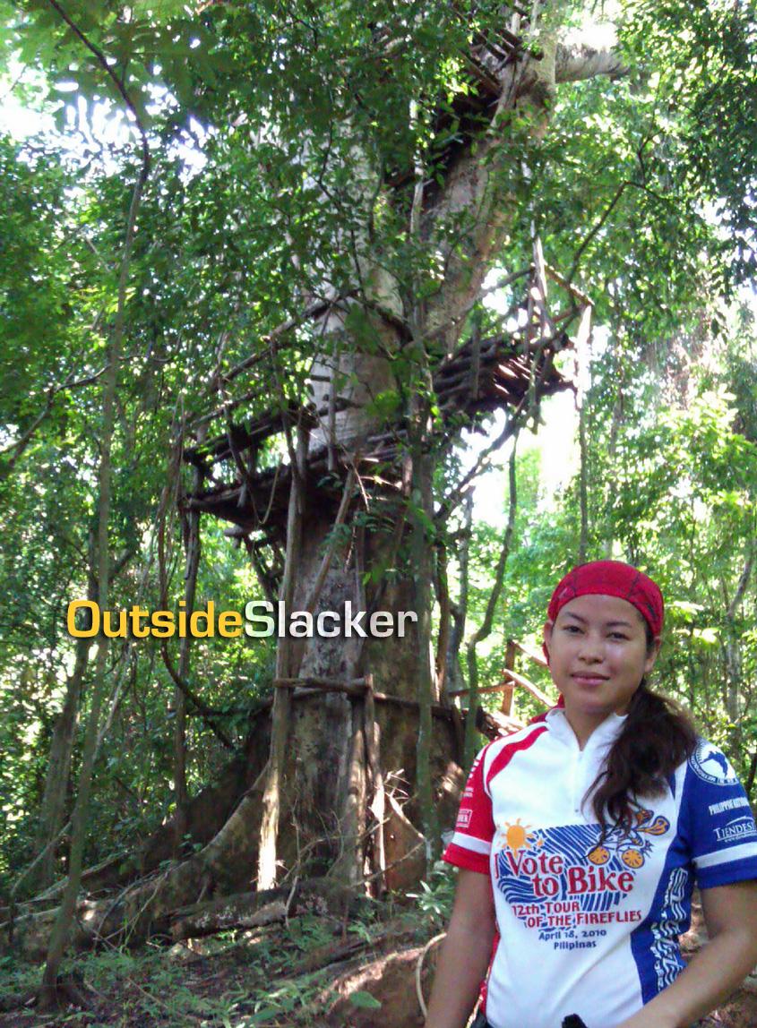 La Mesa Nature Reserve Treehouse