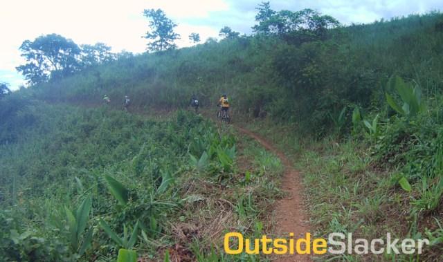 Timberland Trail